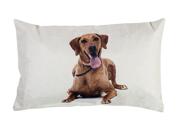 Декоративная подушка Doggy 30x50 cm EV-143442