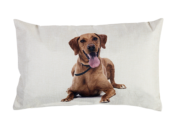 Dekoratiivpadi Doggy 30x50 cm EV-143442