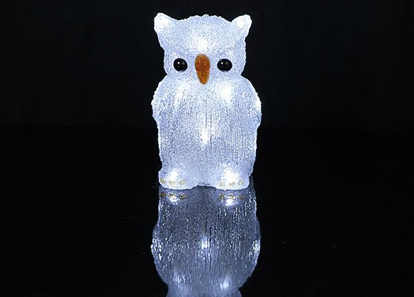 LED tuledega öökull AA-144763