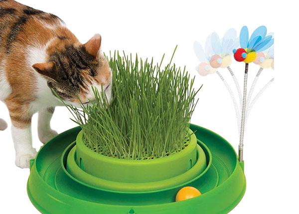 Kehittävä lelu kissoille SG-146198