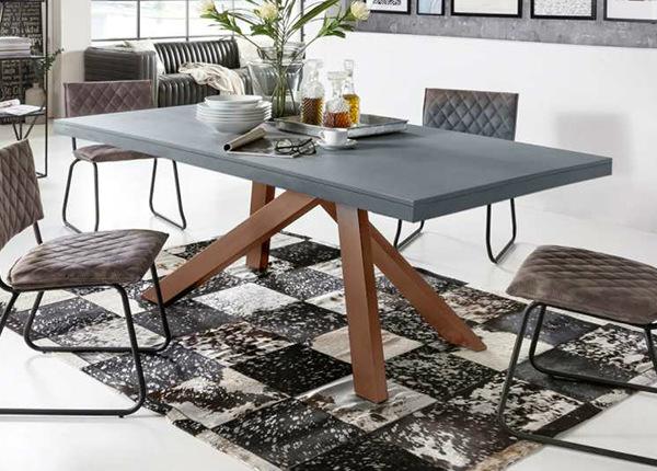 Ruokapöytä Tische 180x100 cm