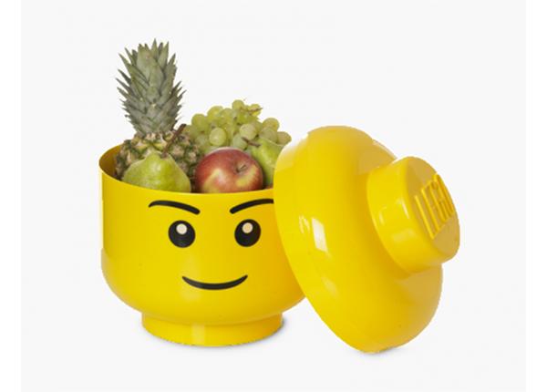 Hoiukarp LEGO poiss