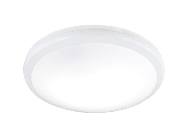 LED Laeplafoon Avior