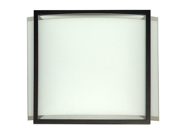 Seinä-/kattovalaisin Quadro AA-147798