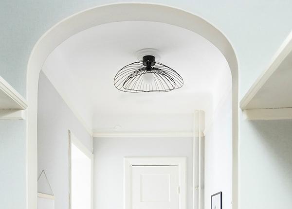 Plafondi Ray AA-150116