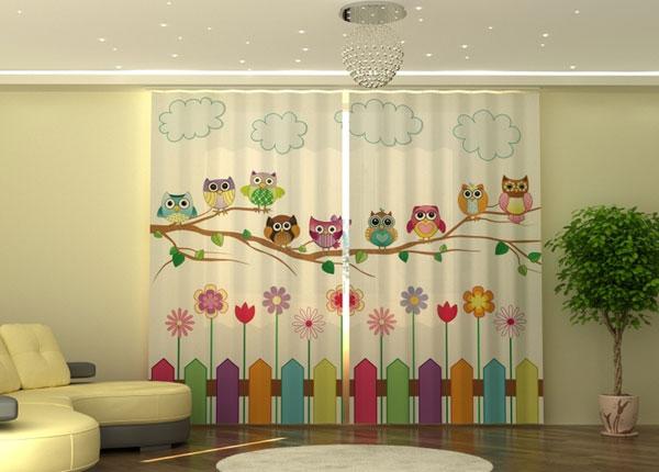 Puolipimentävä verho Funny Owls 290x245 cm ED-152337