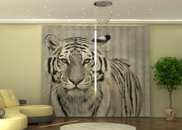 Puolipimentävä verho White Tiger 290x245 cm ED-152347