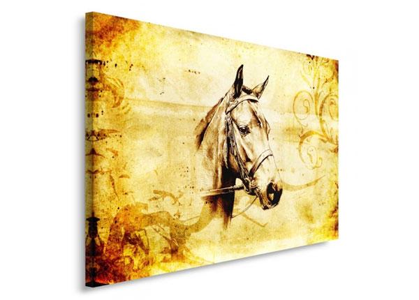 Seinätaulu Horse head 30x40 cm ED-153466