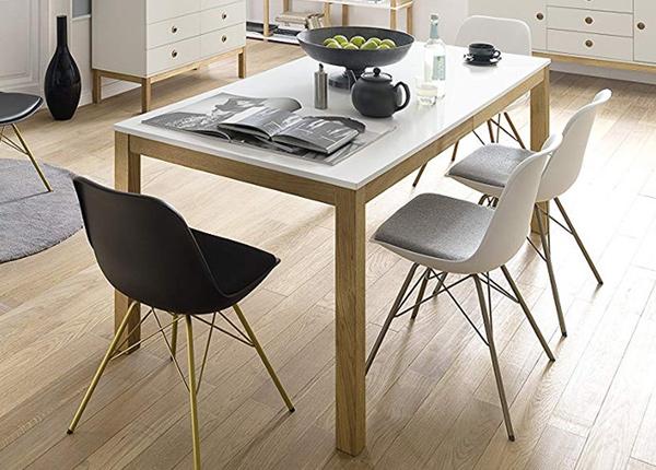 Ruokapöytä Fresh 160x90 cm AQ-154202