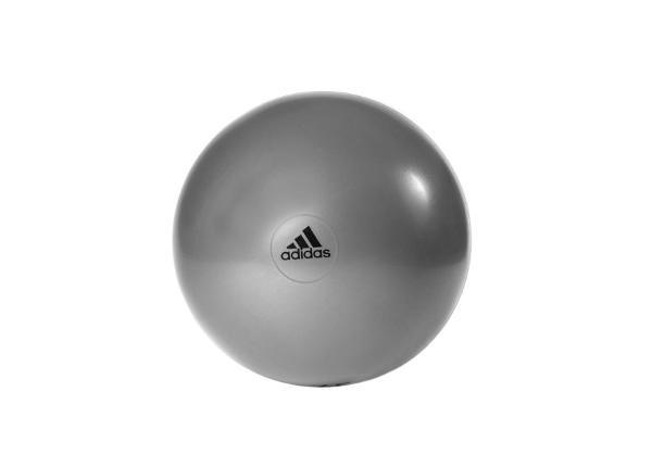 Võimlemispall 75 cm Adidas