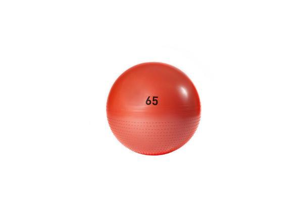 Võimlemispall 65 cm Adidas