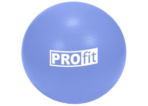 Võimlemispall PROFIT 85 cm