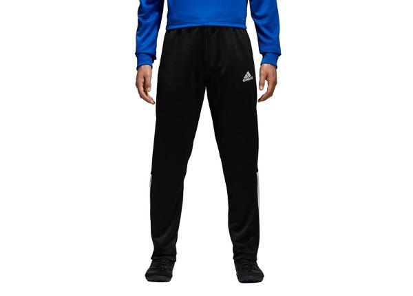 Miesten verryttelyhousut Adidas Regista 18 PES M
