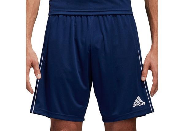 Meeste jalgpalli lühikesed püksid adidas CORE 18 TR Short M CV3995