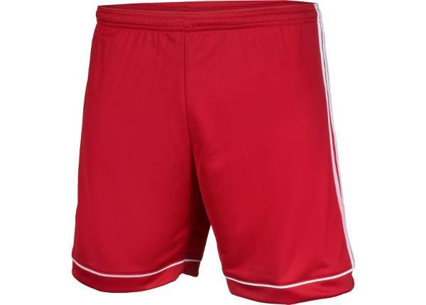 Miesten jalkapalloshortsit adidas Squadra 17 M BK4769