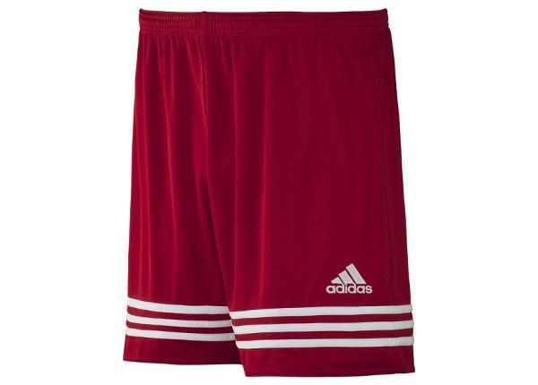 Meeste jalgpalli lühikesed püksid adidas Entrada 14 F50631