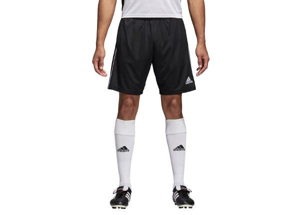 Meeste jalgpalli lühikesed püksid adidas CORE 18 TR Short M CE9031