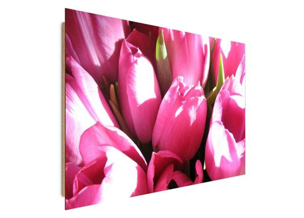 Seinätaulu Pink tulips 60x80 cm