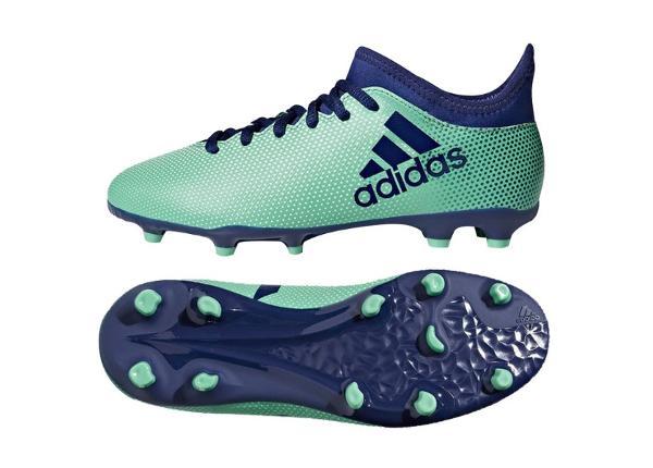 Laste jalgpallijalatsid Adidas X 17.3 FG Jr