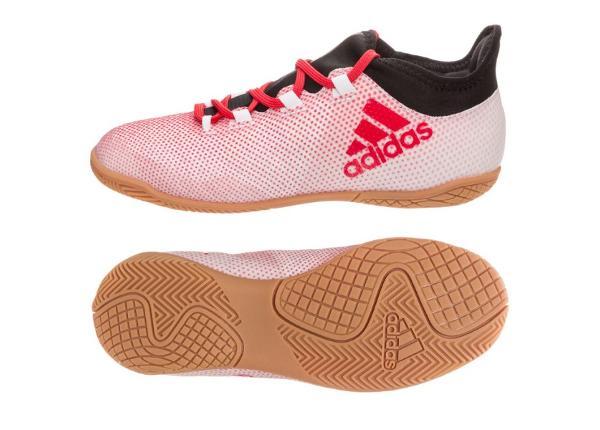 Laste saali jalgpallijalatsid Adidas X Tango 17.3 IN Jr