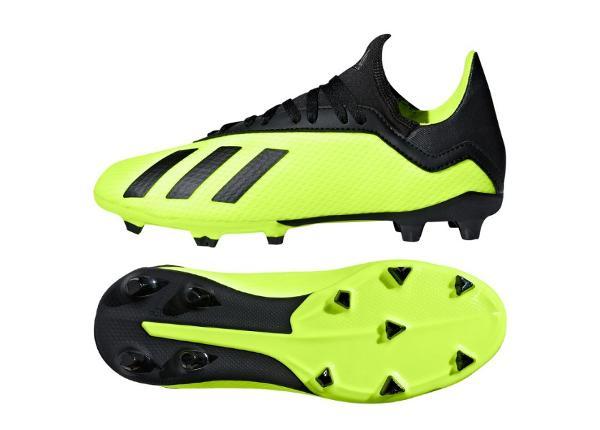 Laste muru jalgpallijalatsid Adidas X 18.3 FG Jr