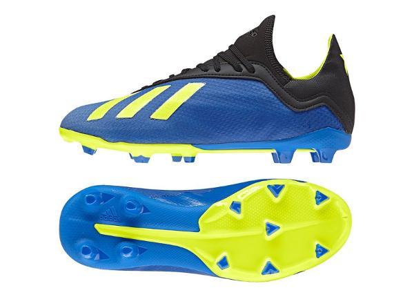 Laste jalgpallijalatsid Adidas X 18.3 FG Jr