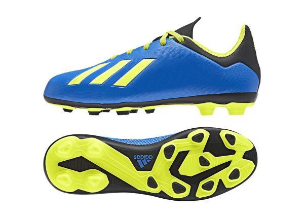 Laste jalgpallijalatsid Adidas X 18.4 FxG Jr