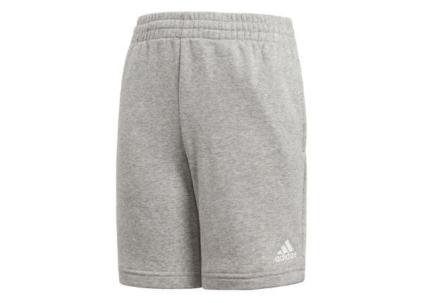 Laste lühikesed püksid Adidas YB Logo Short Jr