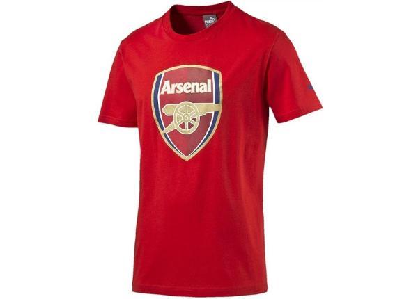 Laste jalgpallisärk Puma Arsenal Football Club Fan Tee Jr