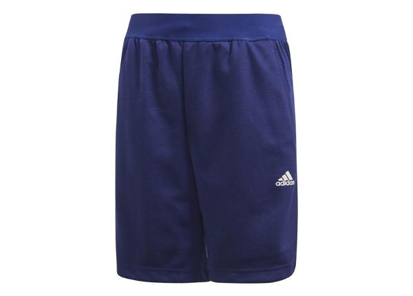 Lasten shortsit Adidas YB Knit Short Jr