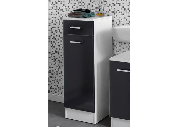 Alumine vannitoakapp Lorenz