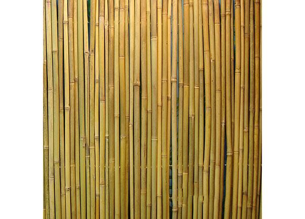 Бамбуковый забор в рулоне 1,5х3 м