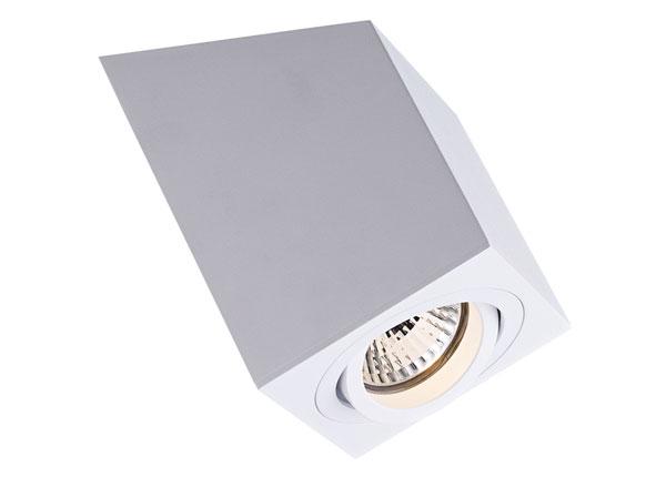 Потолочный светильник Roncub White