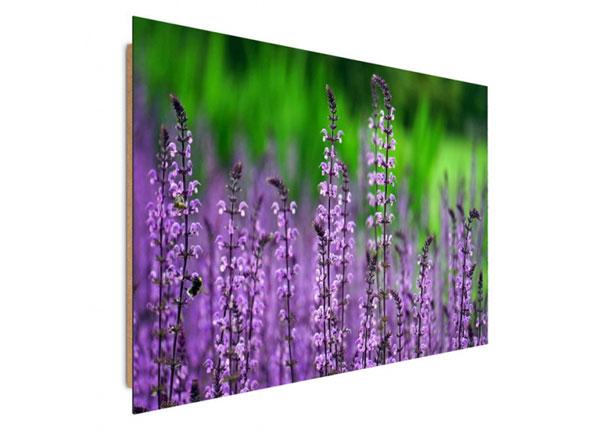 Настенная картина Blooming lavender 30x40 см