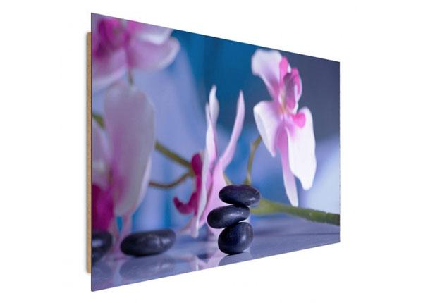Настенная картина Spa stones 30x40 см