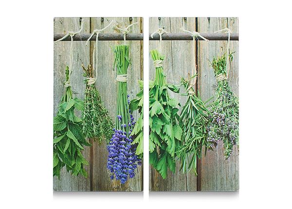 Räiskesuoja/liesisuoja Herbs 52x30 cm 2 kpl