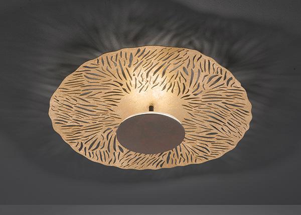 Подвесной светильник Coral LED AA-174675