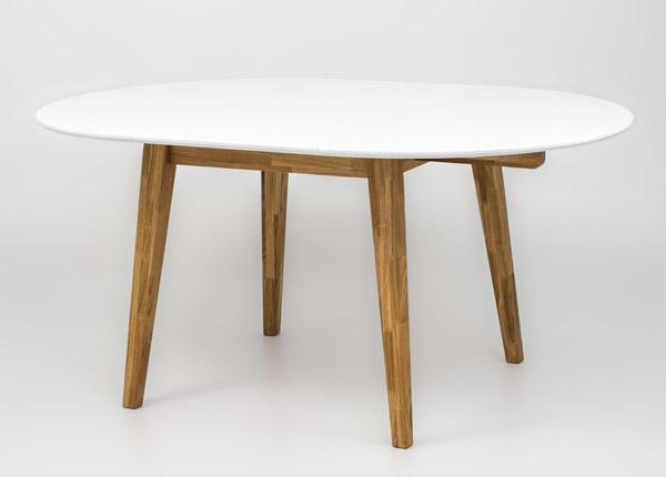 Удлиняющийся обеденный стол 110/160x100 cm RU-175025