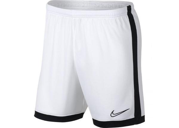 Мужские футбольные шорты Nike Dry Academy M AJ9994-100