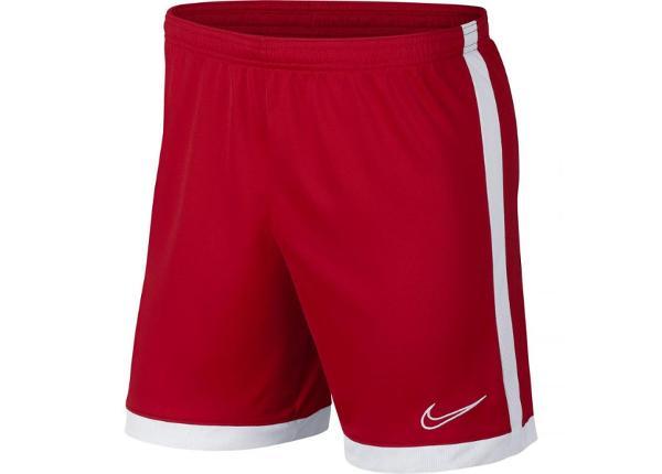 Мужские футбольные шорты Nike Dry Academy M AJ9994-657