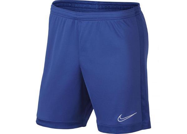 Мужские футбольные шорты Nike Dry Academy M AJ9994-480