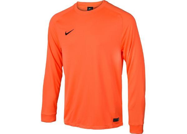 Meeste väravavahi särk Nike PARK GOALIE II LS M 588418-803