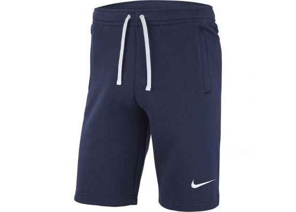 Meeste lühikesed treeningpüksid Nike Short FLC Team Club 19 M AQ3136-451