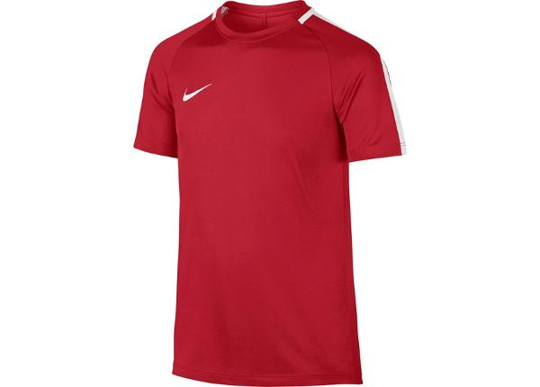 Детская футболка Nike Dry Academy 17 Junior 832969-657