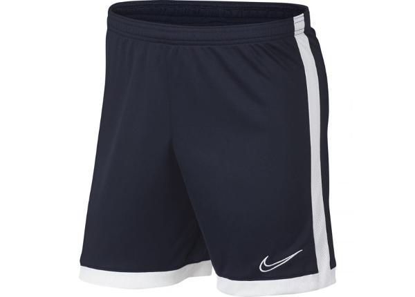 Мужские футбольные шорты Nike Dry Academy M AJ9994-451