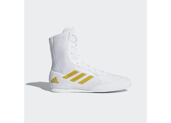 Meeste poksi jalatsid adidas Box Hog Plus valge