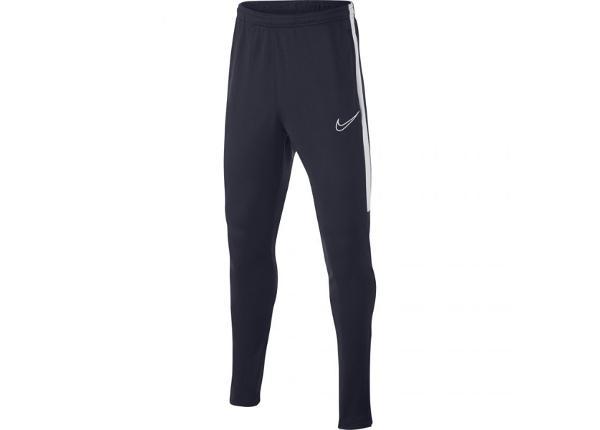 Детские штаны Nike B Dry Academy Junior AO0745-451