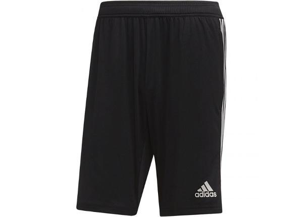 Miesten shortsit Adidas Tiro 19 Training Short M