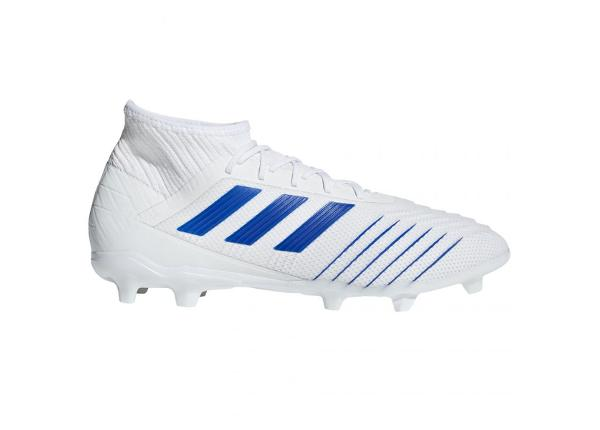 Miesten jalkapallokengät nurmikentälle Adidas Predator 19.2 FG M D97941