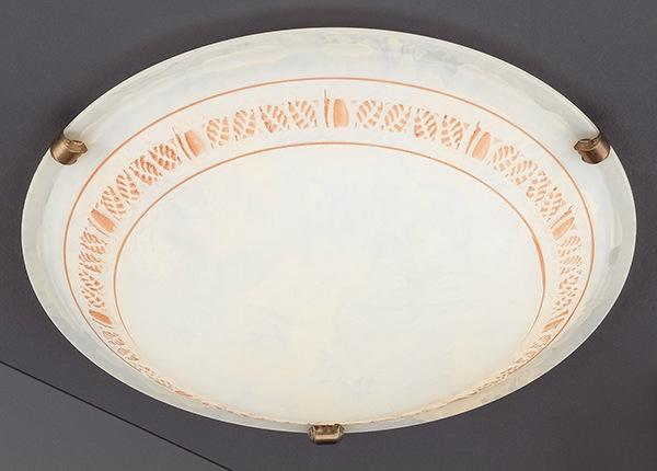 Plafoon Foglia AA-179730